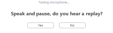 The yes or no answers for testing the microphone