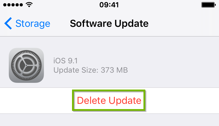 iOS Software update menu highlighting the delete update option.