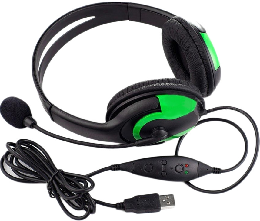 Generic set of headphones with USB cable.