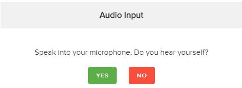 Audio input test