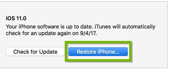 Example of Restore iPhone button selected. Screenshot.