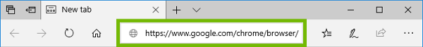 Edge address bar with address entered.