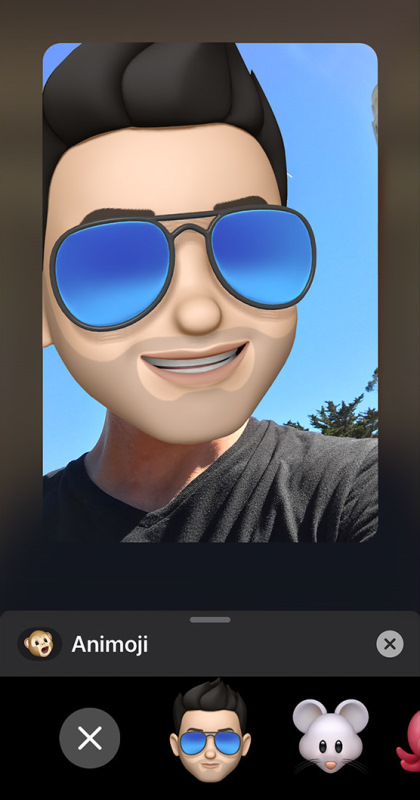 Memoji selection screen in FaceTime on iOS.
