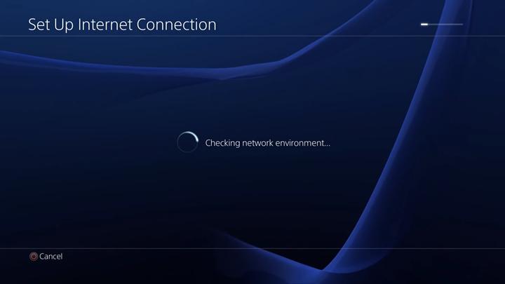 Network environment check screen.