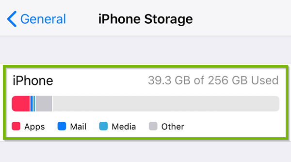 Storage with general storage information highlighted.