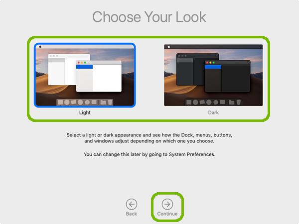 Choose Your Look with continue highlighted.