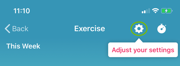 The settings wheel under exercises