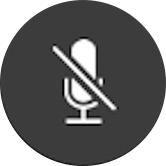 FaceTime mute button
