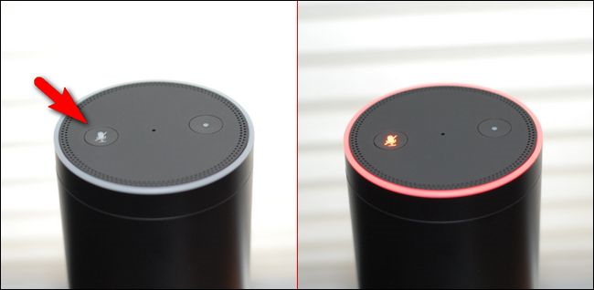 Amazon Echo showing the mute button