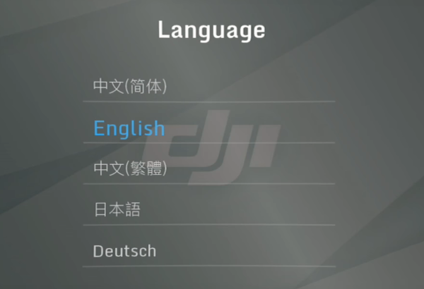 Language selection screen in goggles menu.