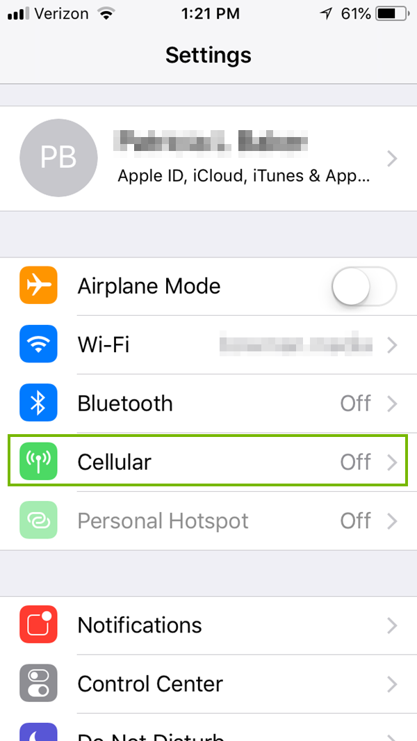 iOS Settings menu with cellular highlighted. Screenshot