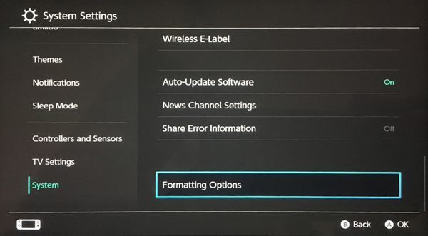 Nintendo switch formatting options