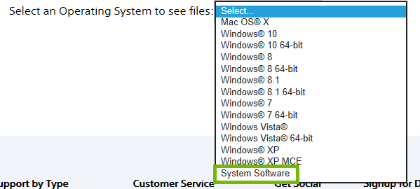 Choices offered for operating system with system software highlighted.