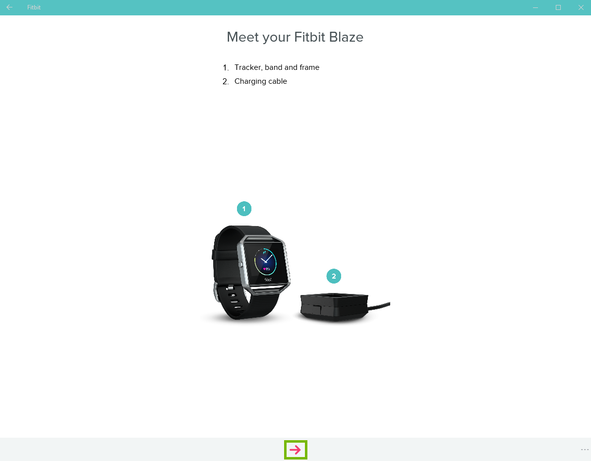 Meet your fitbit introduction screen