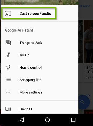 App menu with Cast screen / Audio selected. Screenshot.