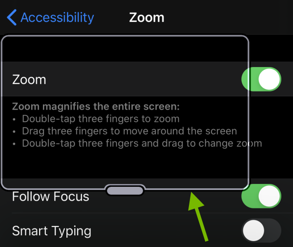 Zoom window edge pointed out on iOS screen.