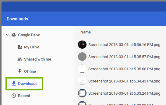 screenshot of the files manager with downloads highlighted