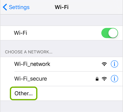Other highlighted in Wi-Fi network list of iOS settings.