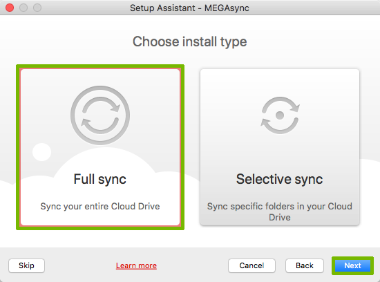 Install type with Full sync and Next button highlighted.