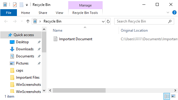 Windows Explorer showing Recycle Bin contents.