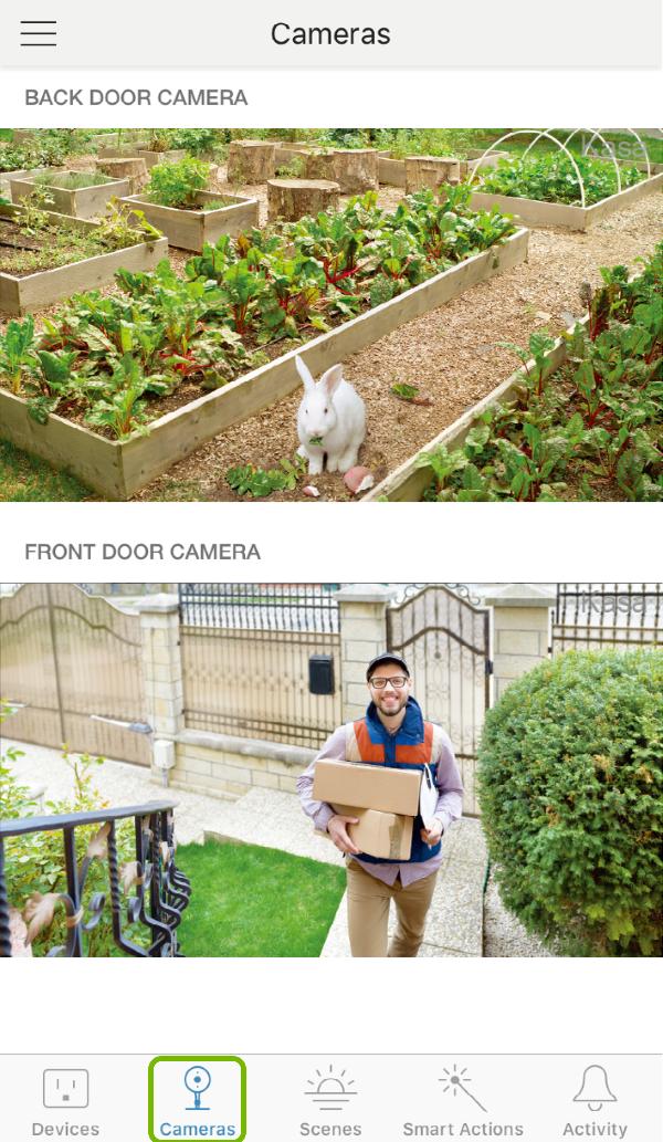 Cameras tab highlighted in Kasa Smart app.