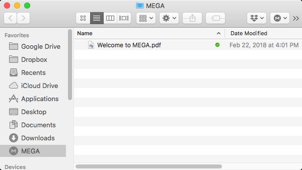 MegaSync folder.