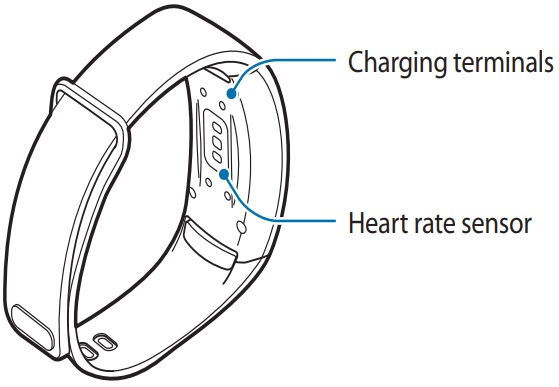 Diagram detailing the charing terminals on back of the watchface