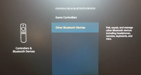 Controllers and Bluetooth Devices menu with Other Bluetooth Devices selected. Screenshot.