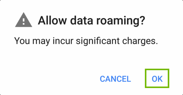 Allow data roaming dialog with OK highlighted.