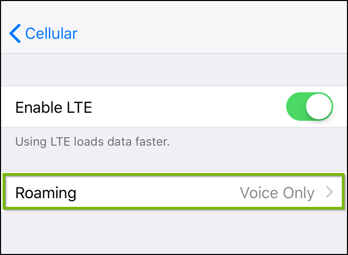 iOS Cellular data options menu highlighting the roaming option.
