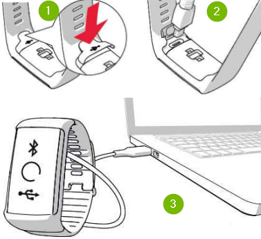 Polar device connected to computer. Diagram.