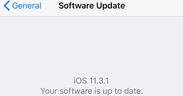iOS up to date software page.
