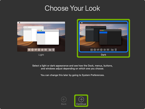 Choose Your Look with Dark and Continue highlighted.