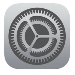 iOS Settings icon.