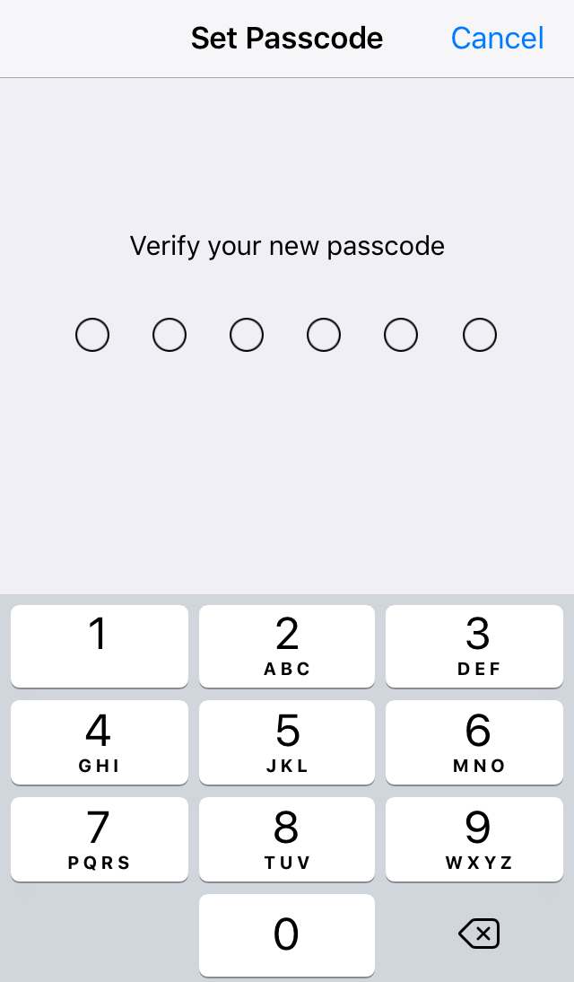 User being prompted to verify the passcode that was previously entered. Screenshot.