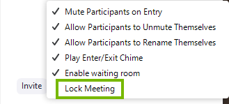 Zoom participants menu highlighting the lock meeting feature.