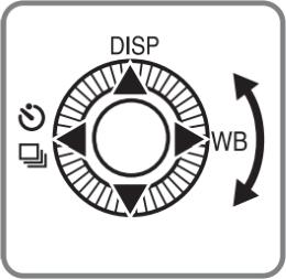 Camera control wheel