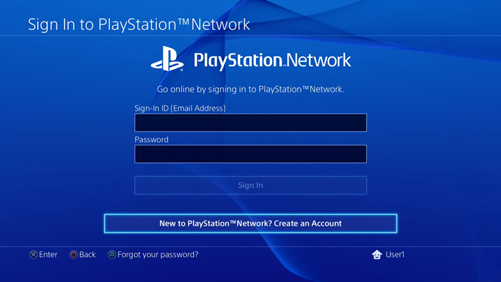 PlayStation Network sing in screen.
