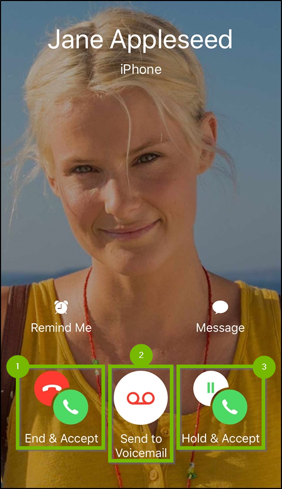 iOS Facetime call waiting screen.