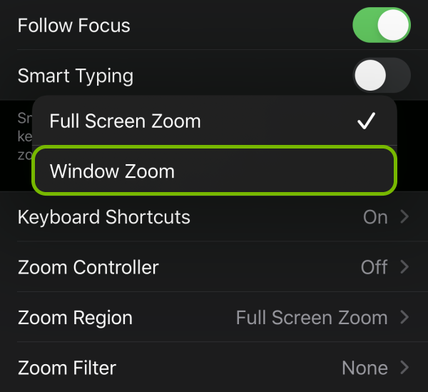 Window Zoom option highlighted in Zoom settings on iOS.