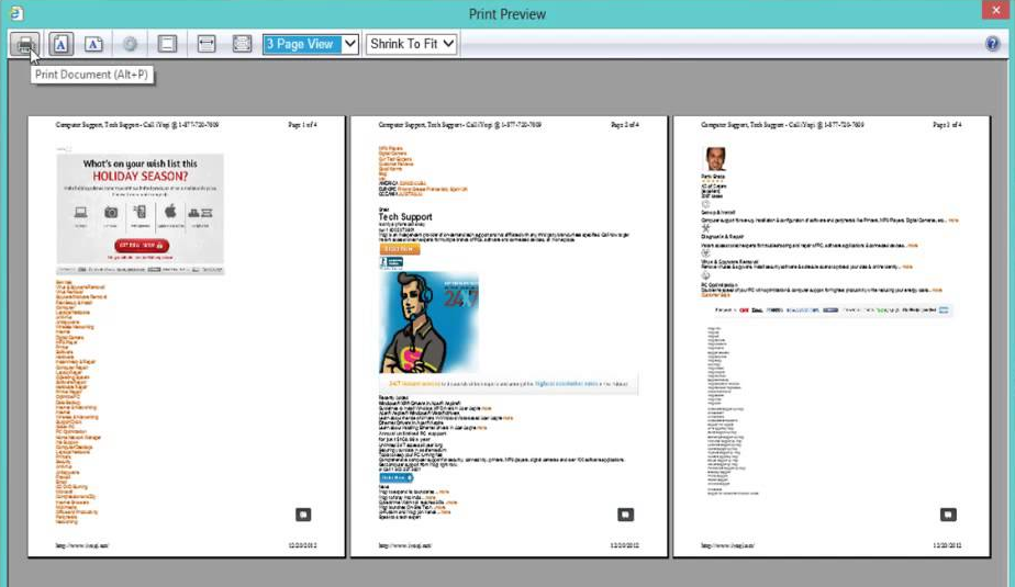 Screenshot of a common print preview screen depicting what will be printed.