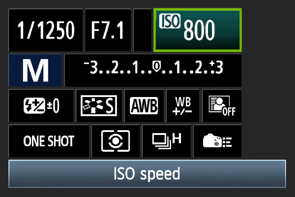 Digital camera ISO setting.