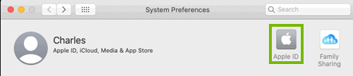The Apple ID button in system preferences