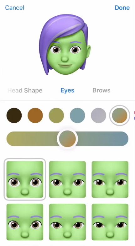 Memoji customization screen on iOS.