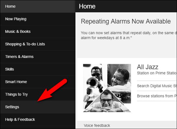 Alexa app with Settings menu selected. Screenshot.