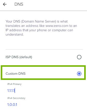 Custom DNS selection