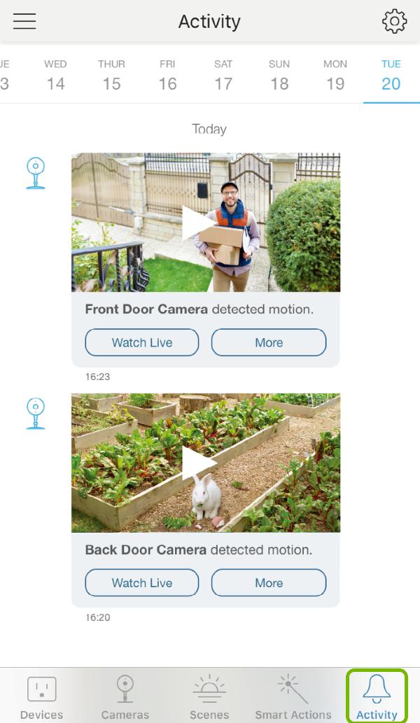 Activity tab highlighted in Kasa Smart app.