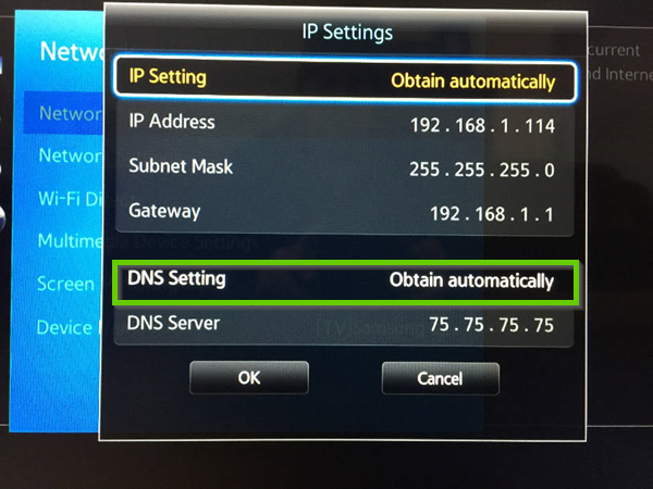 Samsung network ip settings showing dns setting highlighted