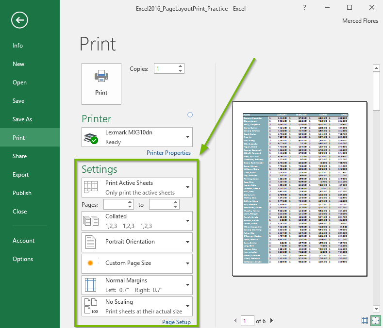 Screenshot of the Microsoft Excel print window highlighting the print settings area.