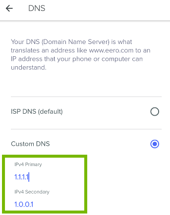 Typing in DNS fields